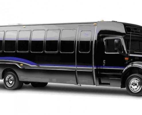 36 Passenger Luxury Party Bus