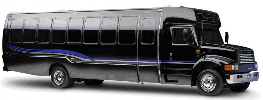 36 Passenger Luxury Party Bus