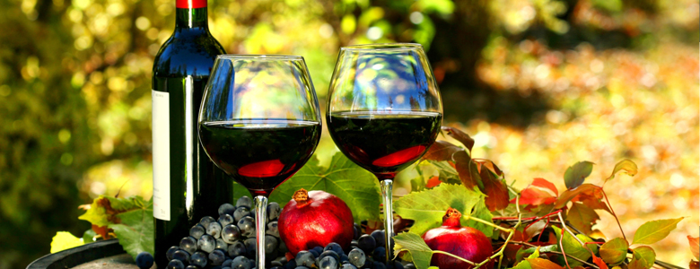 Long-Island-Wine-Limo Services