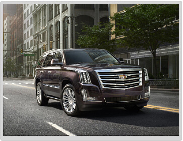 LUXURY ESCALADE
