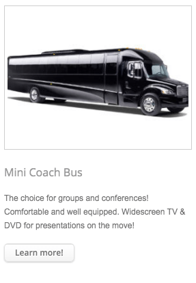 mini-coach-bus
